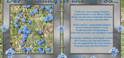 Der Frühling ist wieder! da...