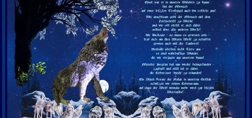 Der Wolf von Brandenburg