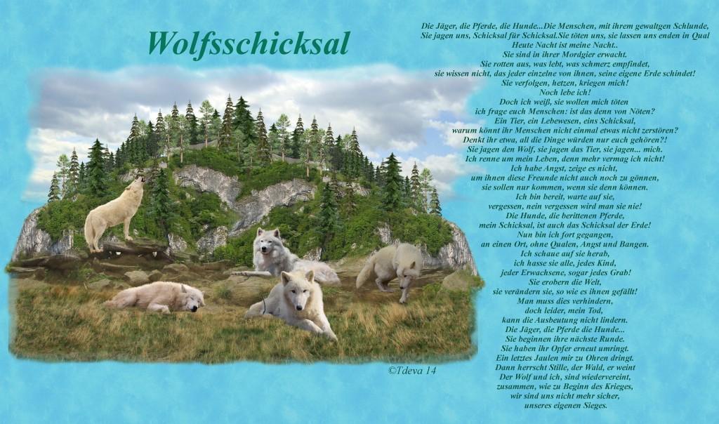 ©Tdeva 14 Wolfsschicksal