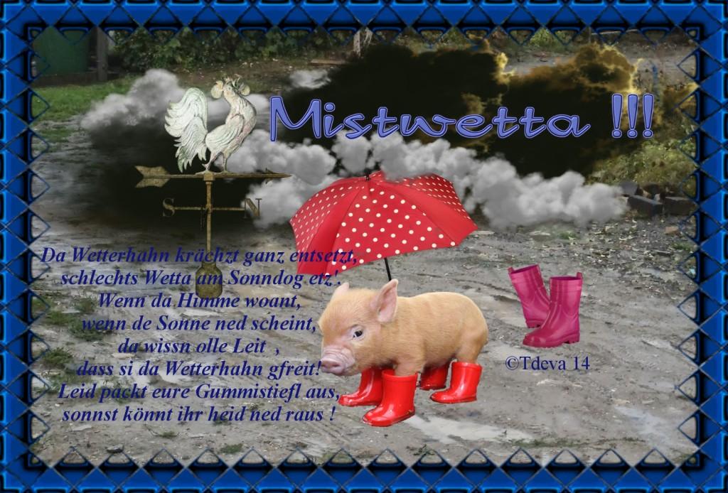 ©Tdeva 14-Wetter