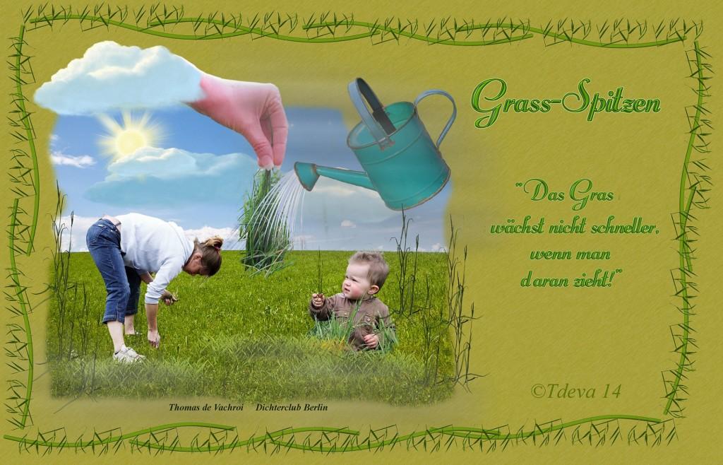 Grass-Spitzen