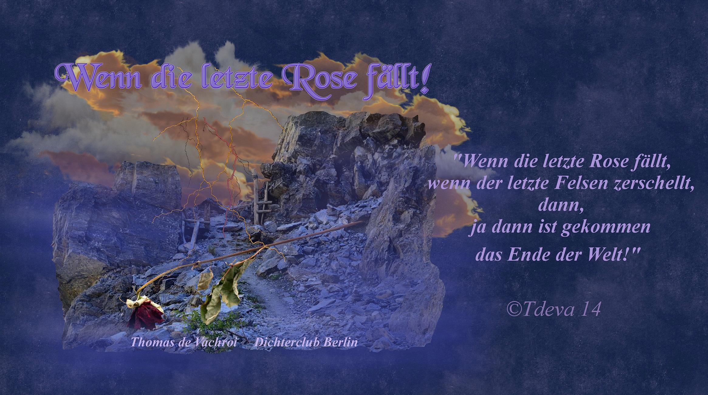 Wenn die letzte Rose fällt!