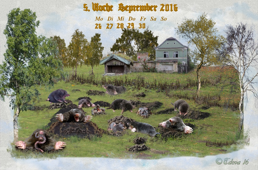 Vachroi's Kalender